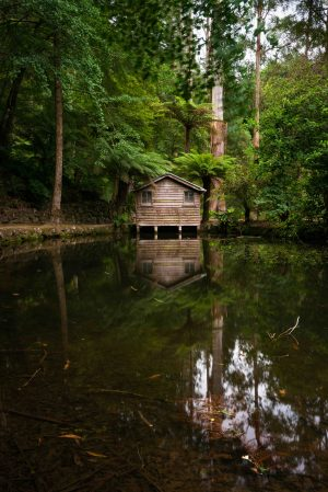 Alfred Nicholas Gardens, Lakehouse, Landscape, Brad Geddes, Brad Geddes Photography, Dandenong Ranges, Boathouse, Reflection, Greenery, Lake