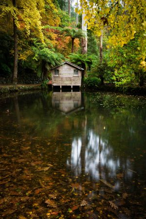 Lakehouse, Alfred Nicholas Gardens, Alfred Nicholas, Dandenong Ranges, Reflection, Boathouse, Autumn