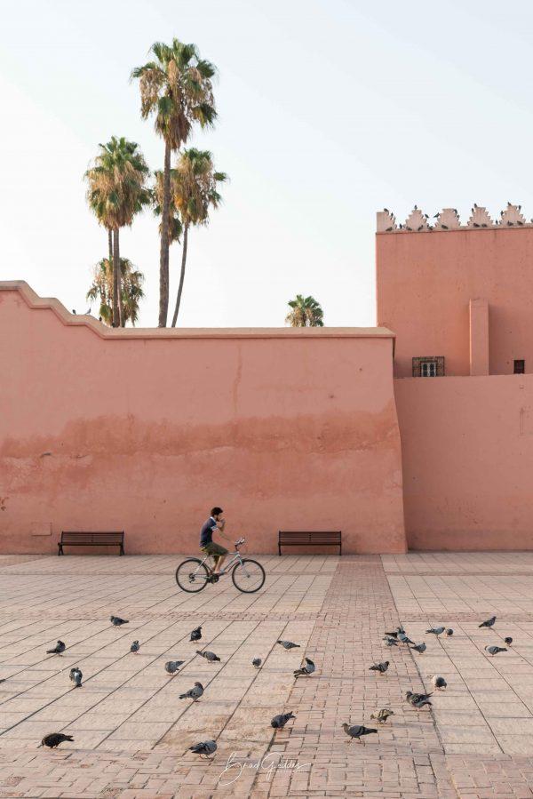 Morocco, Marrakech, Bike, Brad Geddes, Brad Geddes Photography, Palm Tree, Bike rider, Street Photography, Birds, Wall art