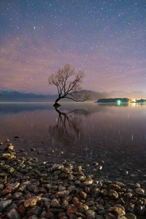 Wanaka, That Wanaka Tree, Wanaka Tree, Astro Photography, Wanaka Lake, Fujifilm, Reflections, Brad Geddes, Brad Geddes Photography, New Zealand, South Island New Zealand, Astro, Stars, Nightscape